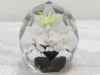 Glass Paperweight - clear glass - 1960